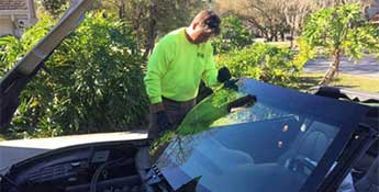 Tampa Windshield replacement